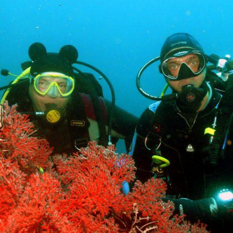 Отзыв Евгения Селиванова об отдыхе и дайвинге на Бали