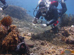 Отзыв Максима Каменко об отдыхе и дайвинге на Бали