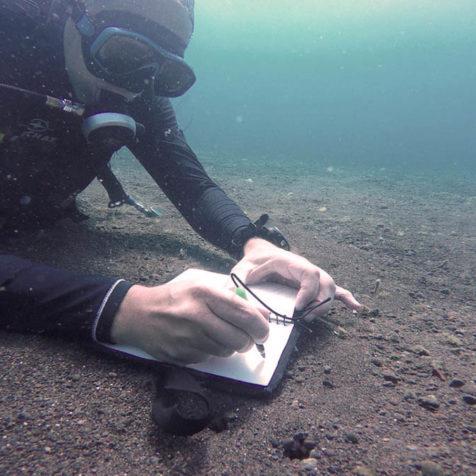 Курс Open Water Diver на Бали